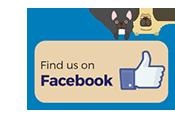 Find us on Facebook Mobile