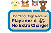 Dog Boarding Mobile