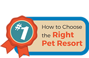 How to Choose the Right Pet Resort Mobile